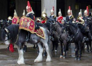 Dyfed Shire Drum Horses