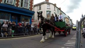 Willa Rose Shire Horse