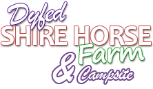Dyfed Shires Horse Farm and Campsite Logo
